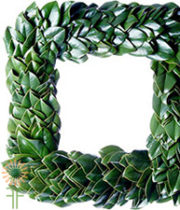 Wreath, Magnolia-square, Grn 24