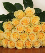 Gold Butterscotch Roses