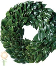 Wreath, Magnolia-round-green 24″