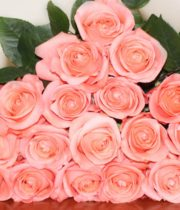 Coral/Peach Peckoubo Roses