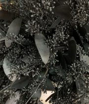 Black Seeded Eucalyptus (sprayed)