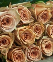 Beige/Brown Toffee Roses