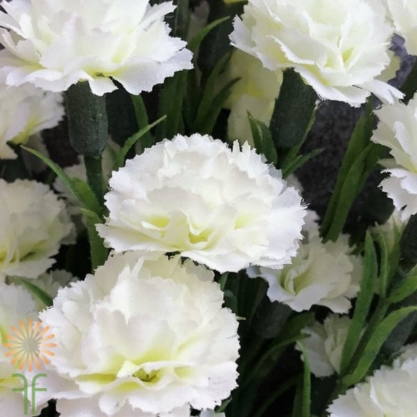 carnation-mini-cream wholesale