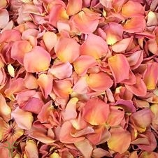 wholesale flowers | rose petals peach