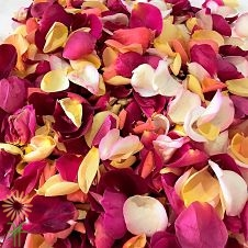 wholesale flowers | rose petals assorted
