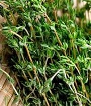 Thyme, Herb