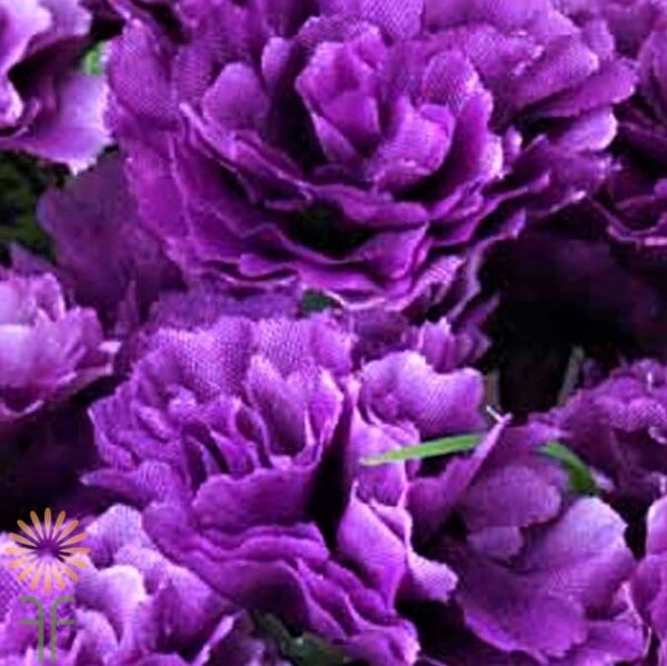 wholesale carnations-mini-purple