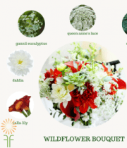 Bouquet Flower Packages – Wildflower