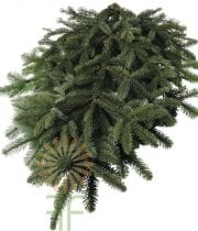 HOLIDAY DECOR NOBLE FIR GREENS