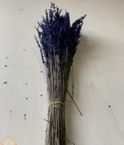Dried And Preserved Lavender