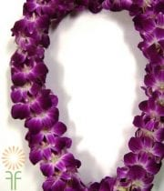 White And Purple Dendrobium Orchid Lei, Double