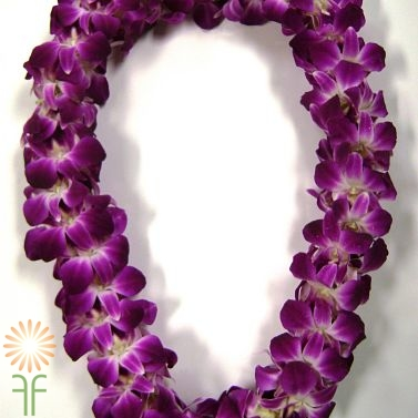 wholesale flowers | orchid- lei purple