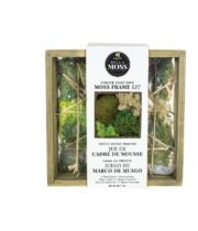 Syndicate Wood Frame Moss Kit, 7″