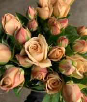 Beige The Earth Spray Roses